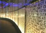 """数据存储的未来:DNA""""磁带"""""""