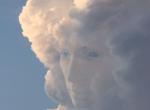 谷歌开放云端图像识别API