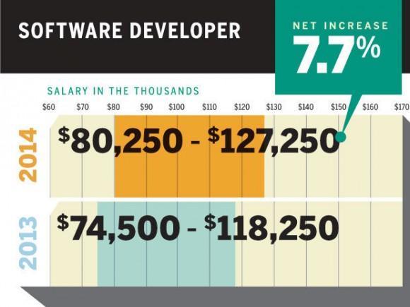 软件开发者