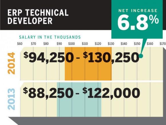 ERP技术开发者