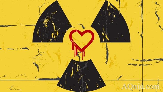 Heartbleed_Hazards