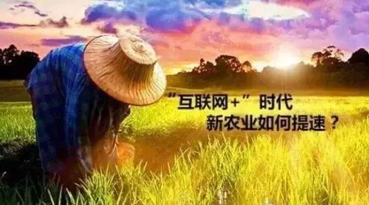 互联网 新农业,智慧农业