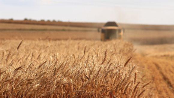 孟山都Atomwise用人工智能研发农作物保护剂