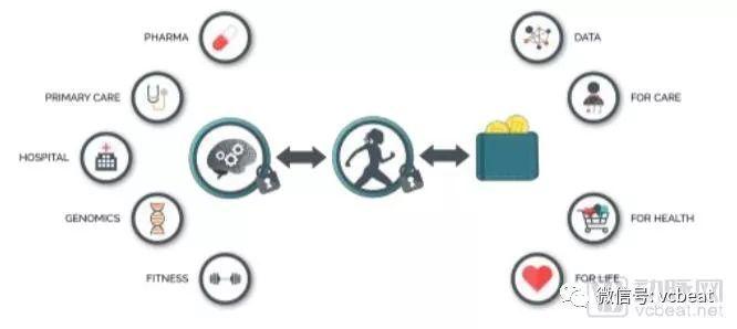 BurstIQ医疗区块链生态系统