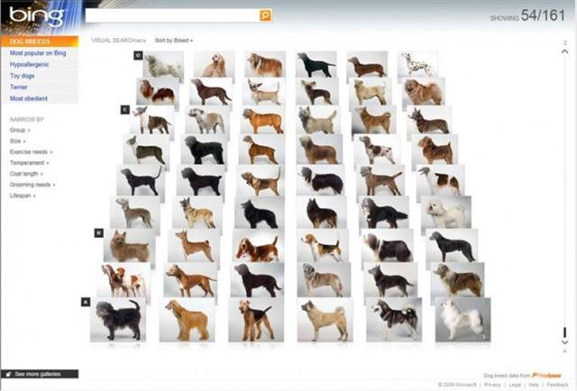 bing视觉搜索图片搜索